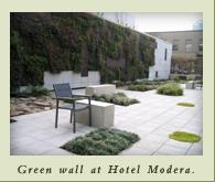 greenwall_hotelmodera.jpg